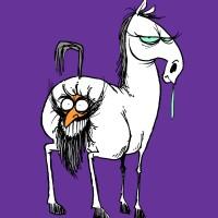 A Horse's Heiny