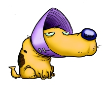Funnel Dog
